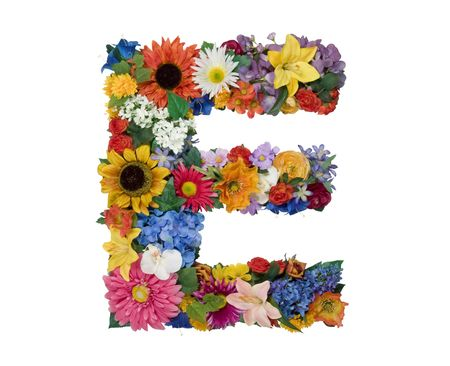 Flower Alphabet - E photo