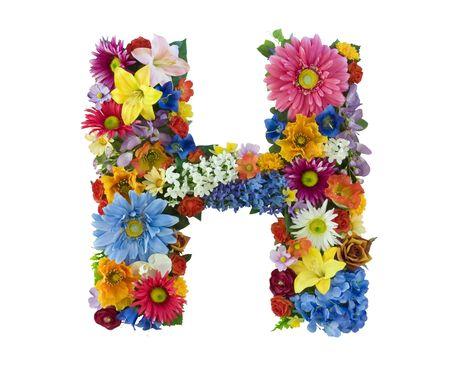 Flower Alphabet - H photo