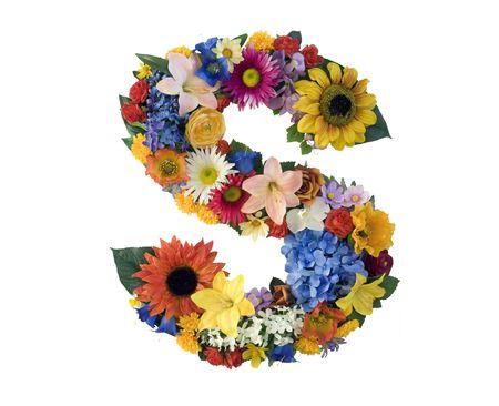 alphabet s: Flor alfabeto - S