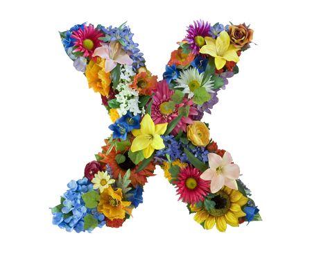 Flower Alphabet  - X photo