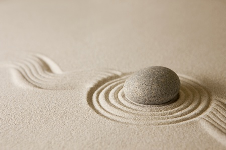 simple life: Mini zen garden