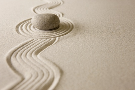 Mini zen garden photo