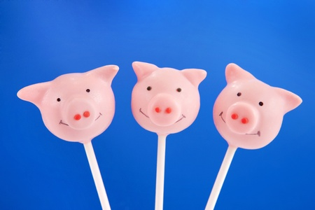 fondant: Pig cake pops Stock Photo