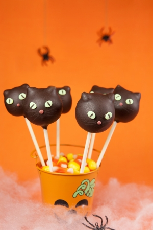 Cat Cake Pops photo