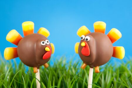 cake ball: Turkey cake pops