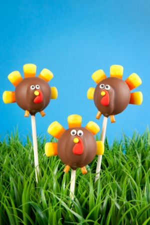cake pops: Turkey cake pops