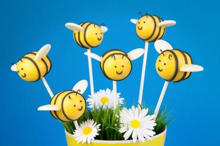 꿀벌 케이크 팝 스톡 콘텐츠