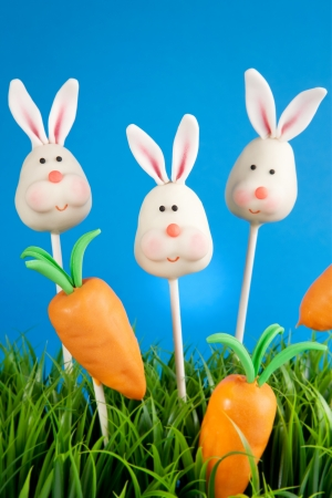 Bunny and carrot cake pops photo