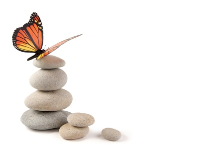 stacked stone: Balanced stones with butterfly