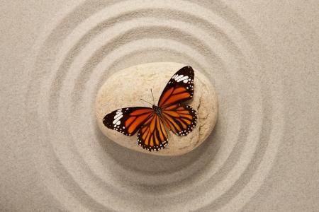 Zen stenen met vlinder