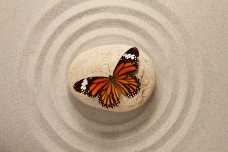 Zen stone with butterfly Stock Photo - 19943402