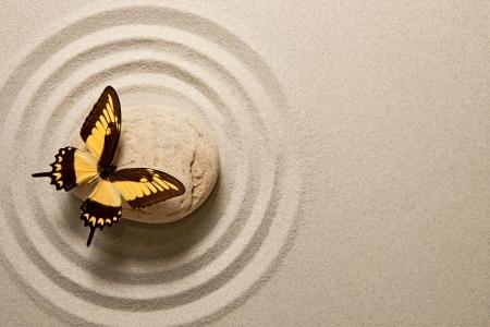 蝶と禅石 写真素材