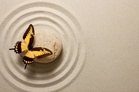 piedras zen: Piedra del zen con la mariposa Foto de archivo