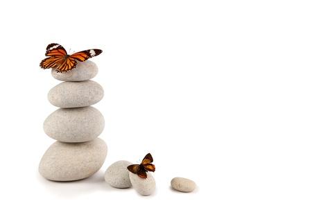 蝶とバランスの取れた石