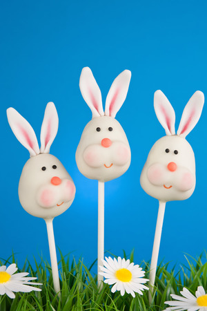 cake pops: Bunny cake pops Stock Photo