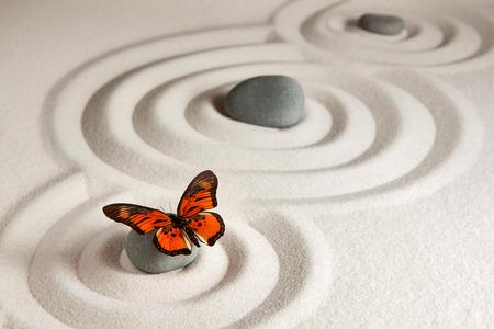 Roches zen avec papillon