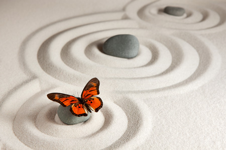 Zen rocks with butterfly Stock Photo