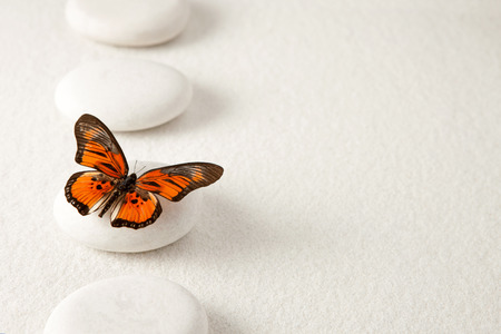 serenity: Background with rocks and butterfly Stock Photo