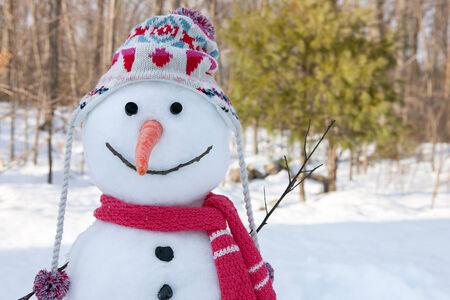 snowman: Snowman Stock Photo