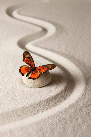 zen attitude: papillon Zen Banque d'images