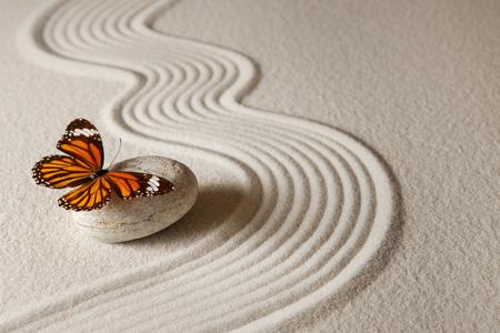 Zen butterfly Banque d'images