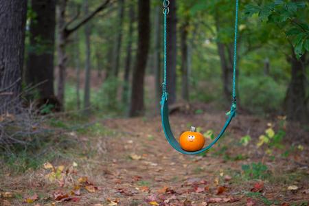 Little pumpkin on a swing