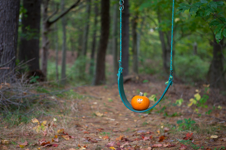 Little pumpkin on a swing