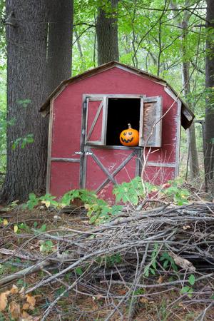 Halloween pumpkin in barn window