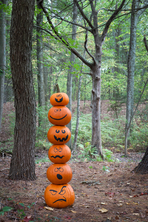 Stack of pumpkins in the woods Stock Photo