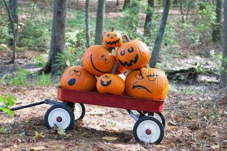 Pumpkins in a wagon Stock Photo