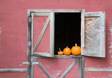 Pumpkins in barn window Standard-Bild