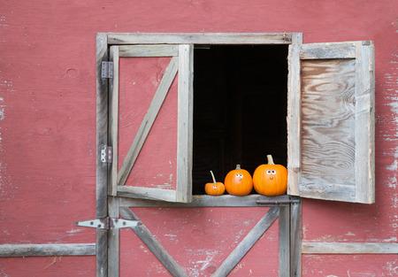 Pumpkins in barn window Stock Photo