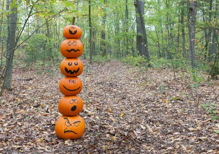 Stack of pumpkins in the woods Standard-Bild