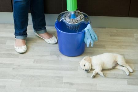 water closet: Little puppy near feet and bucket