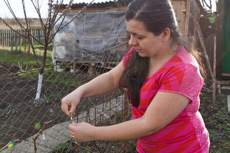 mujer con corbata: Mujer joven lazo peque�o �rbol de la cerca