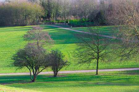 milton: Peaceful landscape in sunny spring day, Milton Keynes, England