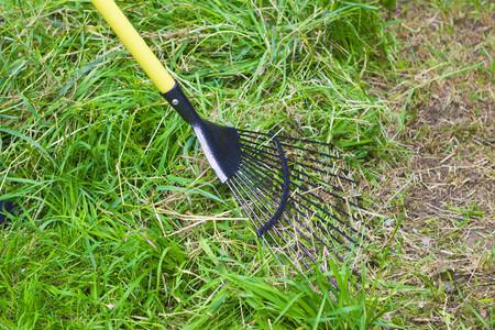 cut grass: Gardener raking cut grass in summer garden