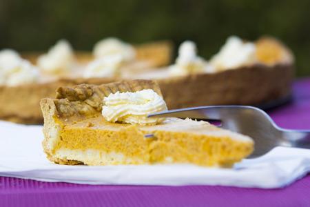 pumpkin pie: Traditional sweet pumpkin pie, shallow depth of field
