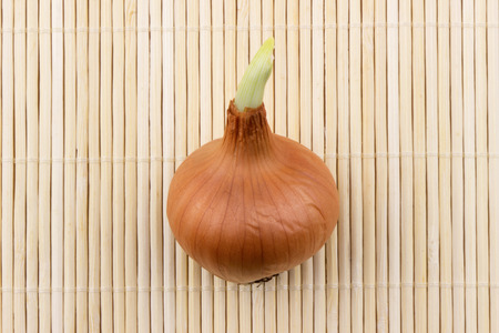 germinate: Young germinate onions on a bamboo mat.
