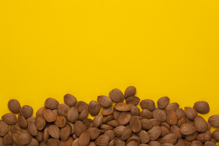 Apricot nuts on yellow background with empty place for your text. Top view.