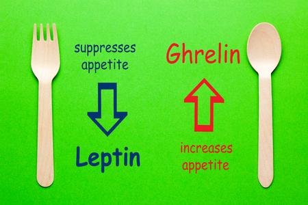 Diagramme des hormones de l'appétit de la leptine et de la ghréline avec cuillère et fourchette sur fond vert. Banque d'images