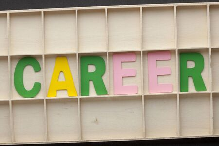 Word Career spelled from colored wooden letters on wooden surface.