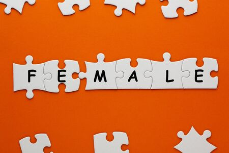 Male and Female word in pieces paper puzzle on orange background. Business concept Фото со стока