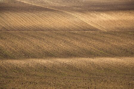 recently: Recently plowed and sown with seeds agricultural field as background. Stock Photo
