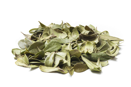 cystitis: Bearberry leaves isolated on white background. Bearberry (Arctostaphylos uva-ursi) is a type of plant of the genus Arctostaphylos . The primary activity of bearberry is antiseptic and slight diuretic effect. Apply in cases of chronic cystitis and pyelitis