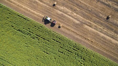 baler: Aerial view of a tractor straw baler working in an agricultural field in a hot summer afternoon. Stock Photo