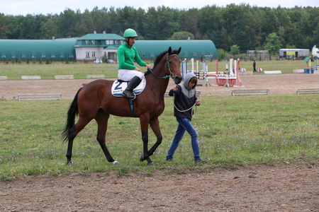 Medvedev, RUSSIA, AUGUST 26, 2017: Open championship on horse racing and jumping devoted to the day of the settlement of Medvedeva - paddock horses with jockeys - warm-up before horse racing Editorial