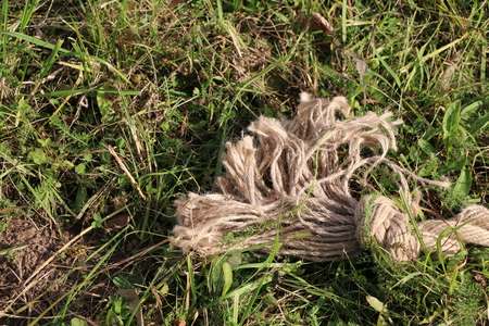 curve: thick braided rope with knots on the grass