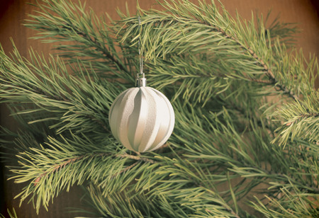 shiny christmas tree toys on a green pine branch for background, advertising and design
