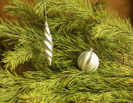shiny Christmas tree toys on a green pine branch for background, advertising and design.